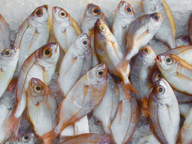 health benefits of eating fish, it save from cancer